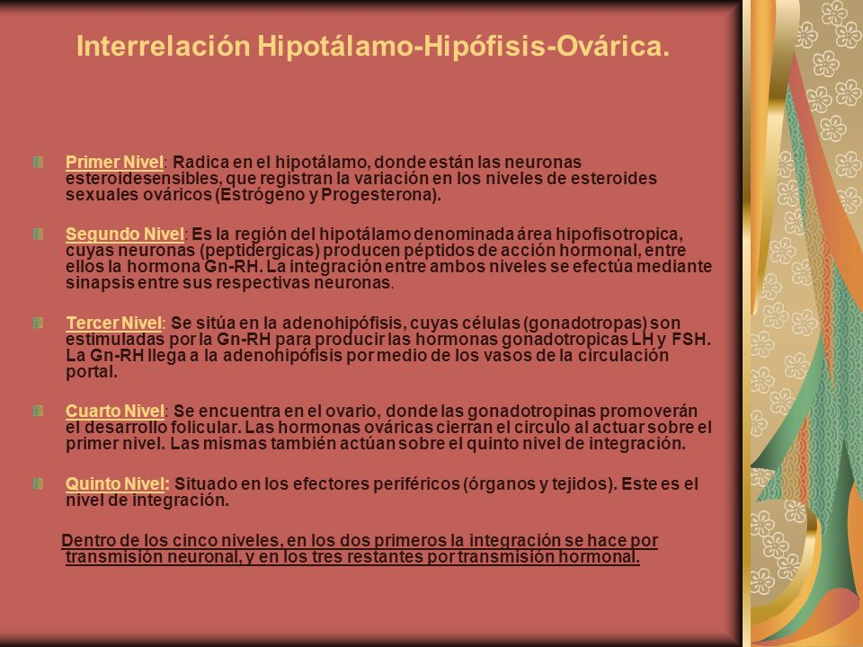 Interrelación Hipotálamo-Hipófisis-Ovárica. Primer Nivel: Radica en el hipotálamo, donde están las neuronas esteroidesensibles, que registran la varia