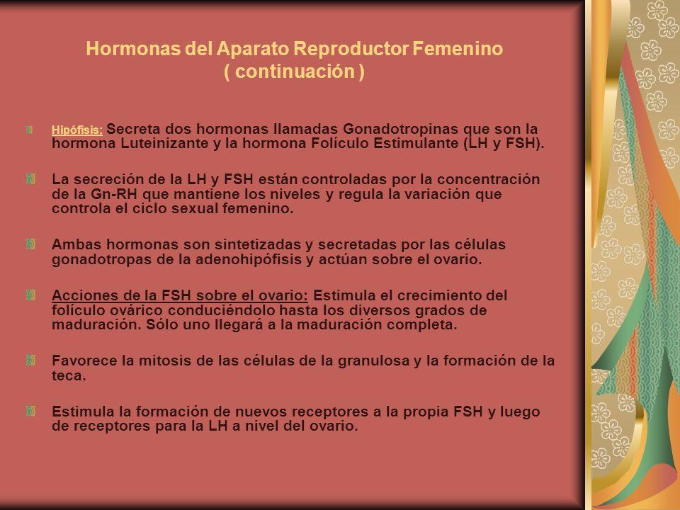 Hormonas del Aparato Reproductor Femenino ( continuación ) Hipófisis: Secreta dos hormonas llamadas Gonadotropinas que son la hormona Luteinizante y l