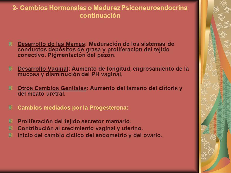 2- Cambios Hormonales o Madurez Psiconeuroendocrina continuación Desarrollo de las Mamas: Maduración de los sistemas de conductos depósitos de grasa y
