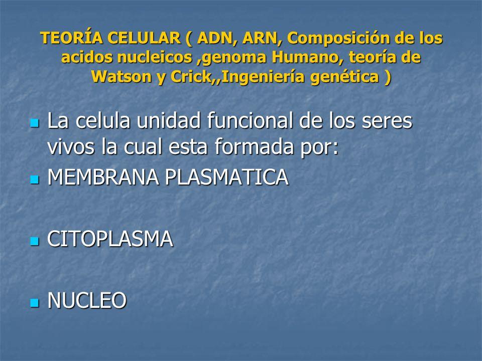 TEORÍA CELULAR ( ADN, ARN, Composición de los acidos nucleicos,genoma Humano, teoría de Watson y Crick,,Ingeniería genética ) La celula unidad funcion