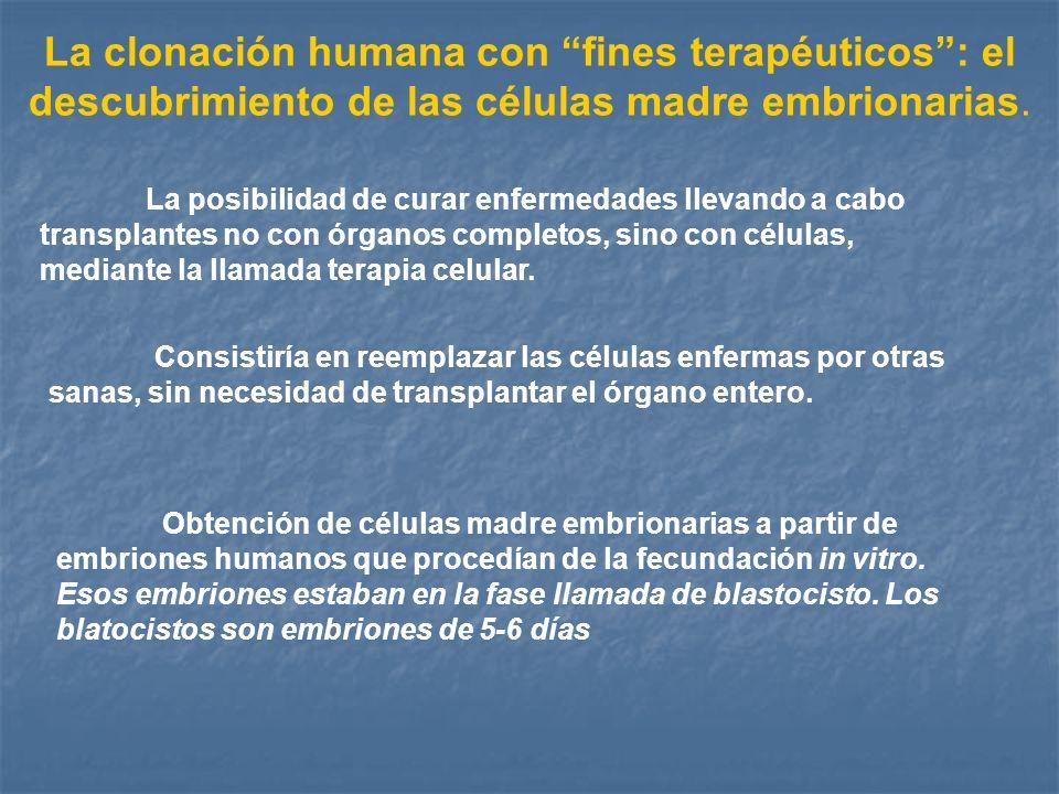 La clonación humana con fines terapéuticos: el descubrimiento de las células madre embrionarias. La posibilidad de curar enfermedades llevando a cabo