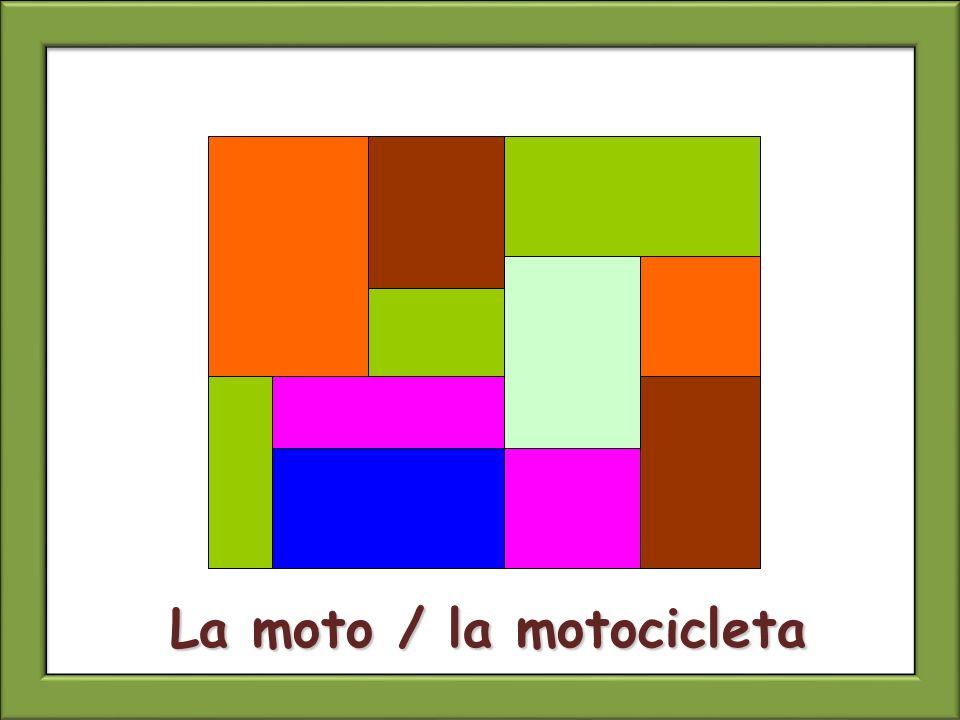 La moto / la motocicleta