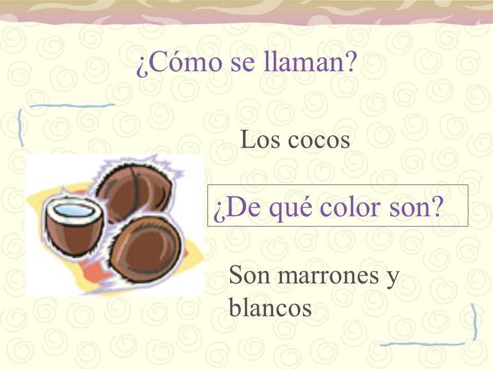 ¿Cómo se llaman? ¿De qué color son? Los cocos Son marrones y blancos