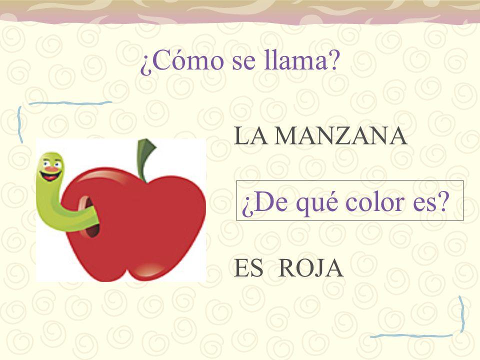¿Cómo se llaman? ¿De qué color son? Las peras SON VERDES