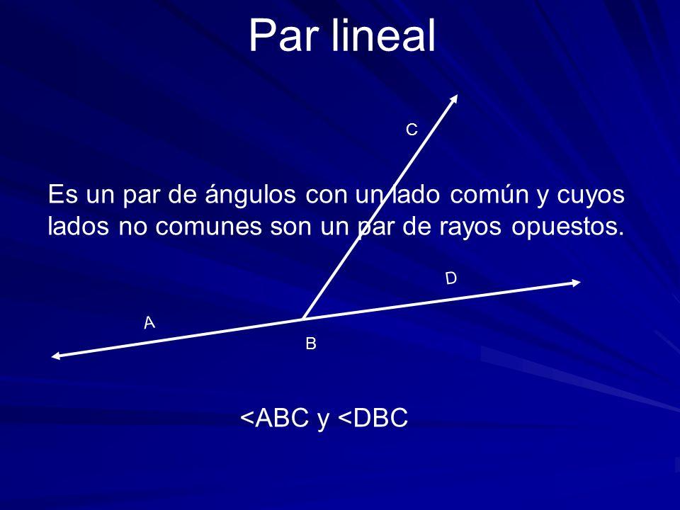 A C Es un par de ángulos con un lado común y cuyos lados no comunes son un par de rayos opuestos. Par lineal B D <ABC y <DBC