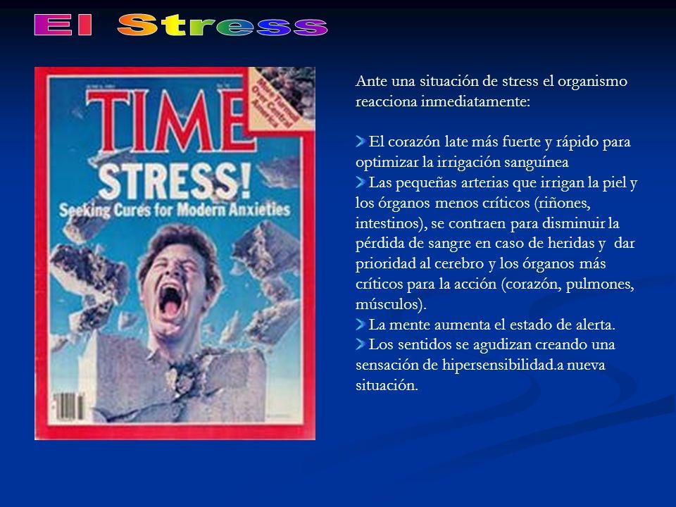 Ante una situación de stress el organismo reacciona inmediatamente: El corazón late más fuerte y rápido para optimizar la irrigación sanguínea Las peq