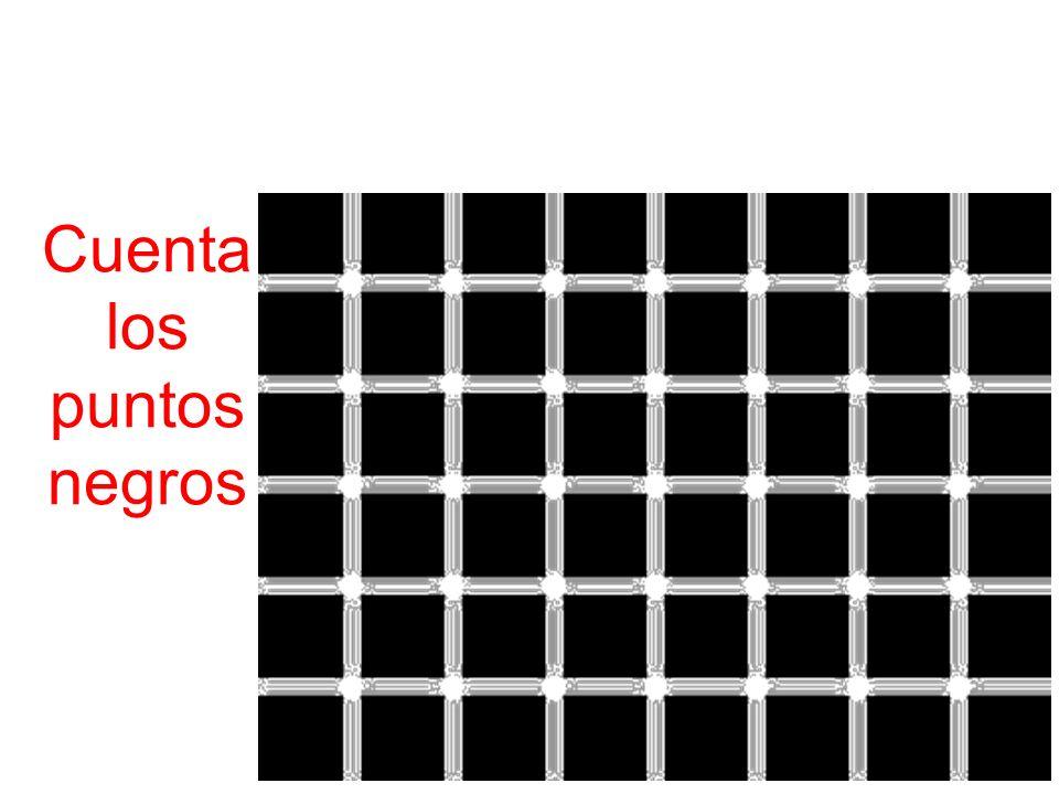 Cuenta los puntos negros