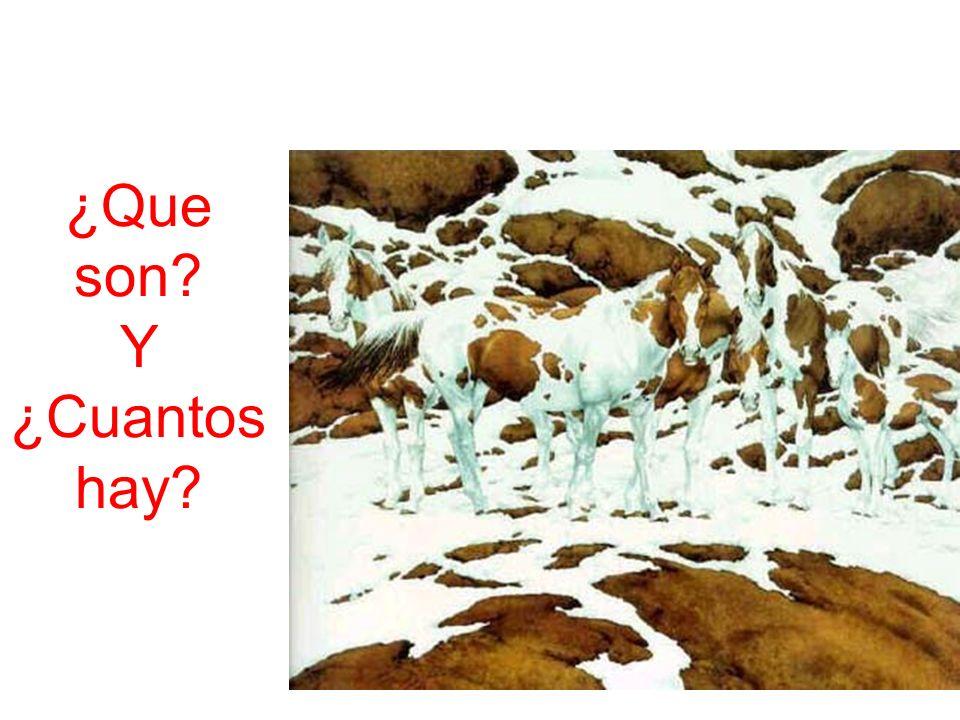 Profesor: Luis Bringas Egúsquiza 109 No me ofrezca cosas, ofrézcame ideas, emociones, ambiente, sentimientos y ventajas.