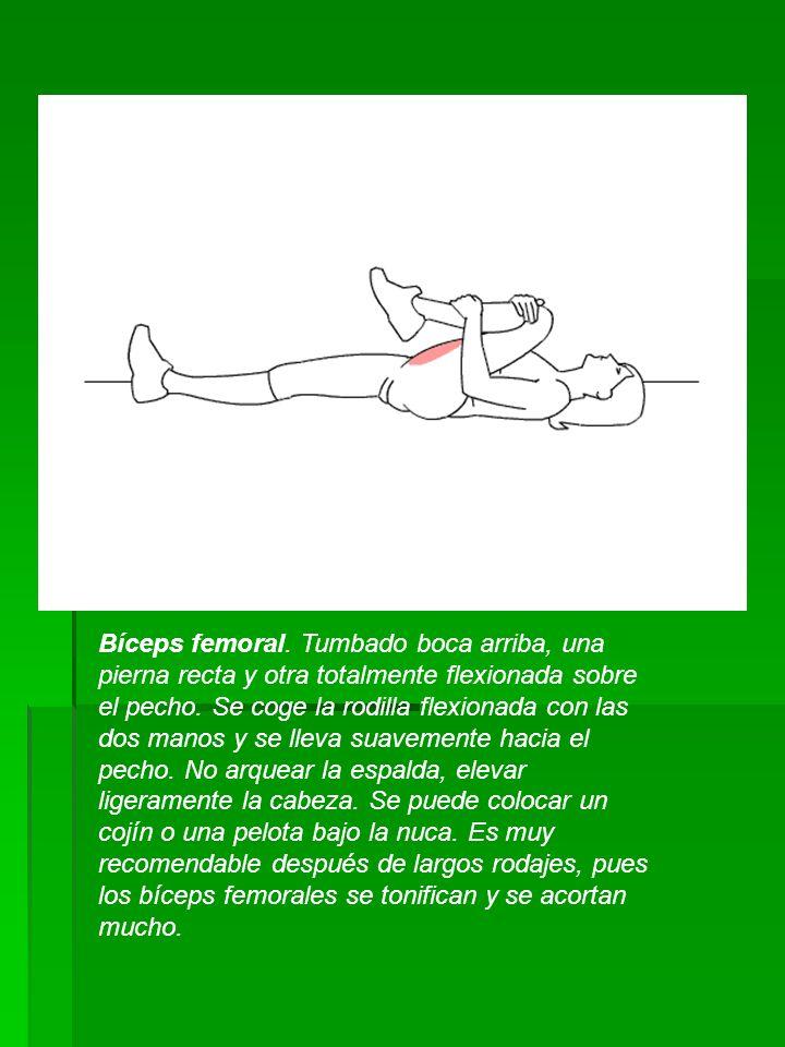 Bíceps femoral. Tumbado boca arriba, una pierna recta y otra totalmente flexionada sobre el pecho. Se coge la rodilla flexionada con las dos manos y s