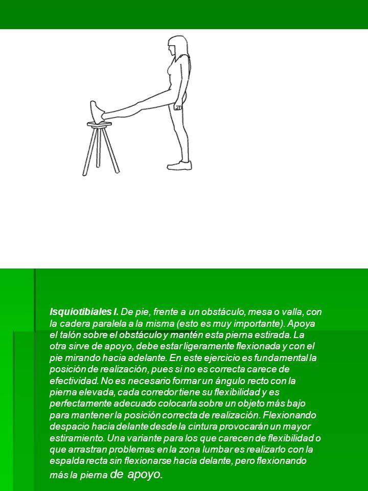 Isquiotibiales I. De pie, frente a un obstáculo, mesa o valla, con la cadera paralela a la misma (esto es muy importante). Apoya el talón sobre el obs
