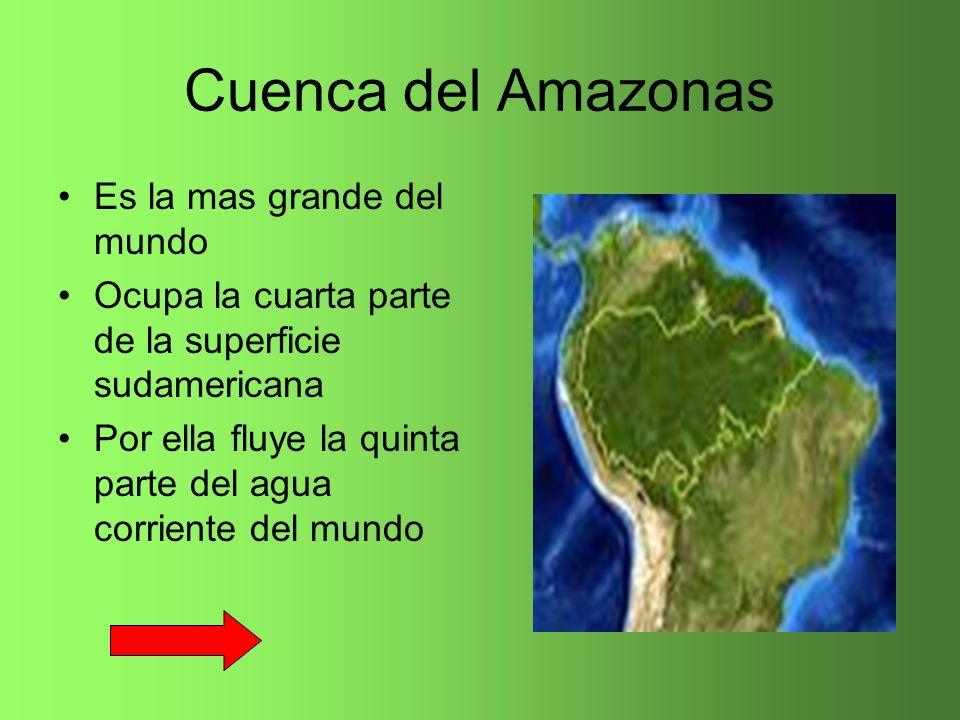 Cuenca del Amazonas Es la mas grande del mundo Ocupa la cuarta parte de la superficie sudamericana Por ella fluye la quinta parte del agua corriente d