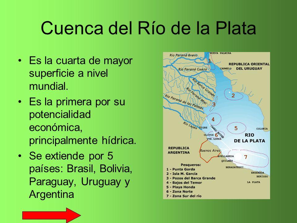 Cuenca del Río de la Plata Es la cuarta de mayor superficie a nivel mundial. Es la primera por su potencialidad económica, principalmente hídrica. Se