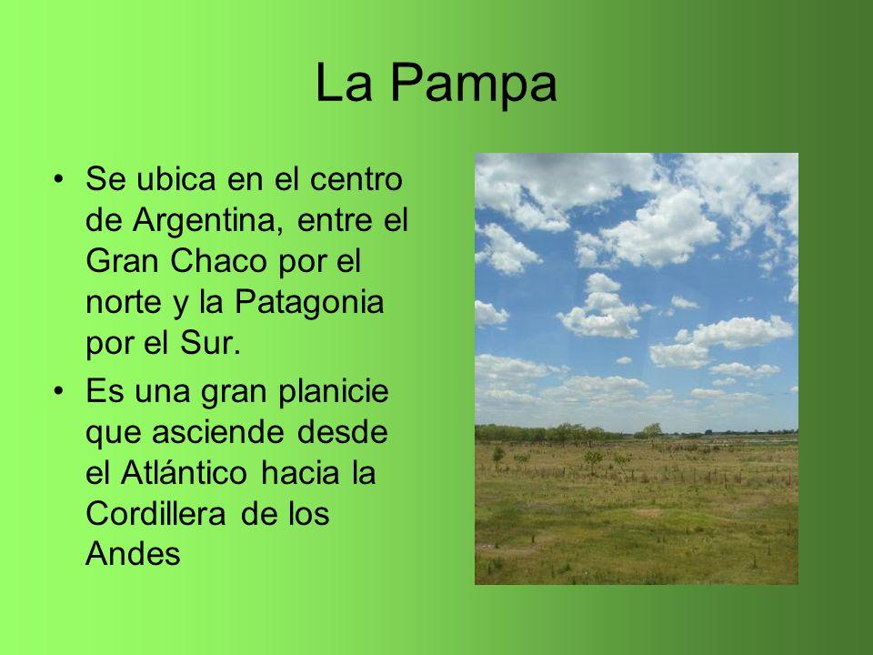 La Pampa Se ubica en el centro de Argentina, entre el Gran Chaco por el norte y la Patagonia por el Sur. Es una gran planicie que asciende desde el At