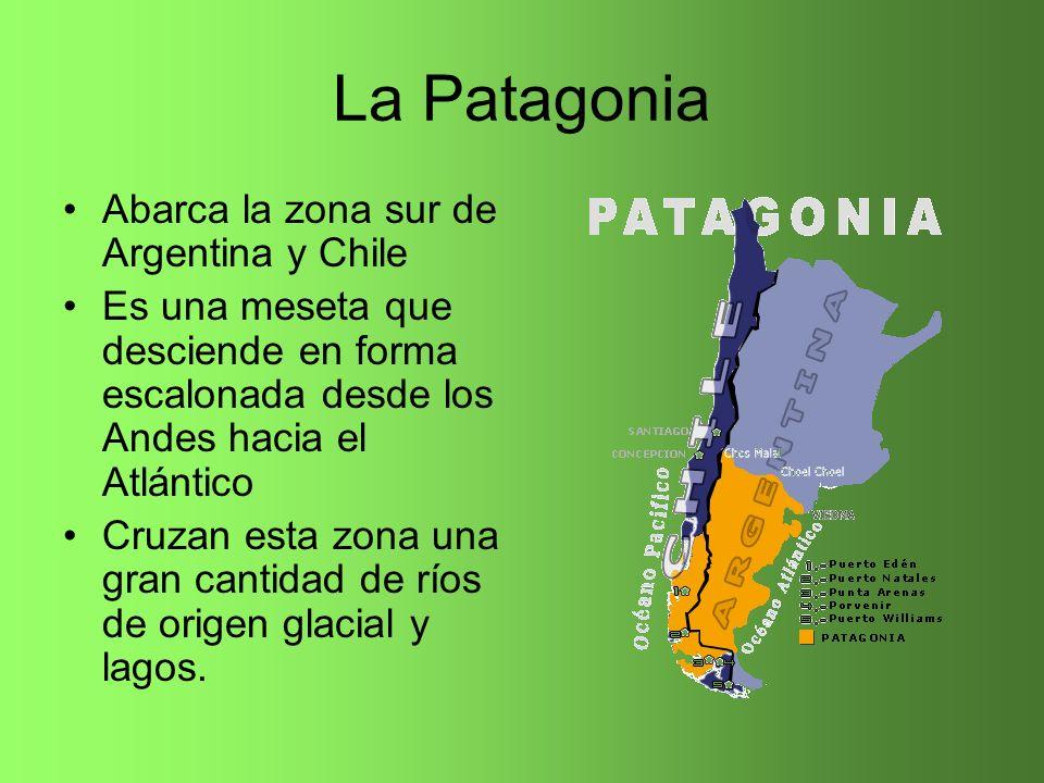 La Patagonia Abarca la zona sur de Argentina y Chile Es una meseta que desciende en forma escalonada desde los Andes hacia el Atlántico Cruzan esta zo