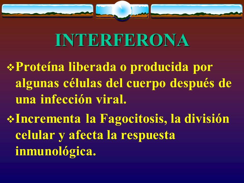 INTERFERONA Proteína liberada o producida por algunas células del cuerpo después de una infección viral. Incrementa la Fagocitosis, la división celula