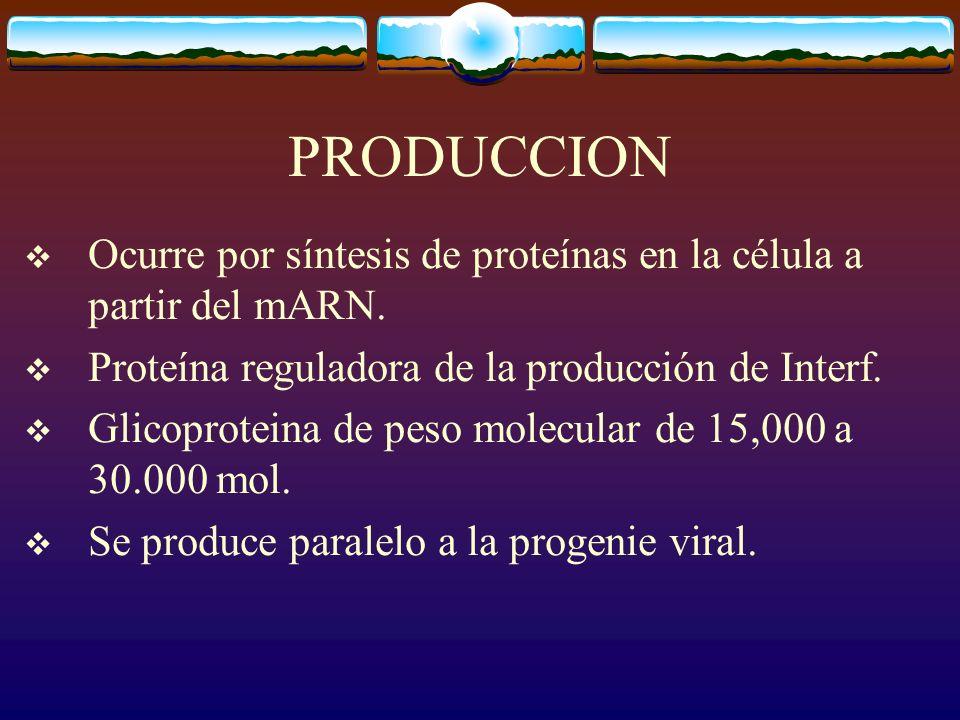 Tipo de interferona Celula productora Estimulo Acción mayor Fibro/epitelialFibroblasto, macrófago epitelial Virus, ácidos nucleicos Antiviral leucocito Células extrañas, virus Activa células asesinas antiviral InmunelinfocitosMitógenos antígenos Inmunoregula doras