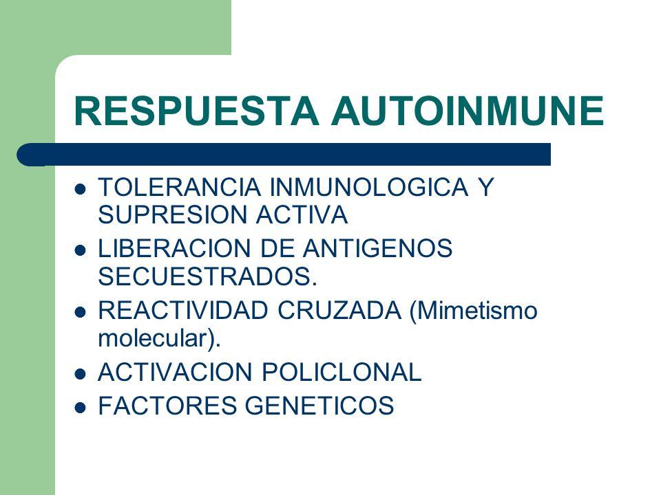 RESPUESTA AUTOINMUNE TOLERANCIA INMUNOLOGICA Y SUPRESION ACTIVA LIBERACION DE ANTIGENOS SECUESTRADOS. REACTIVIDAD CRUZADA (Mimetismo molecular). ACTIV
