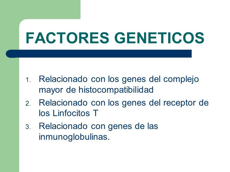 FACTORES GENETICOS 1. Relacionado con los genes del complejo mayor de histocompatibilidad 2. Relacionado con los genes del receptor de los Linfocitos