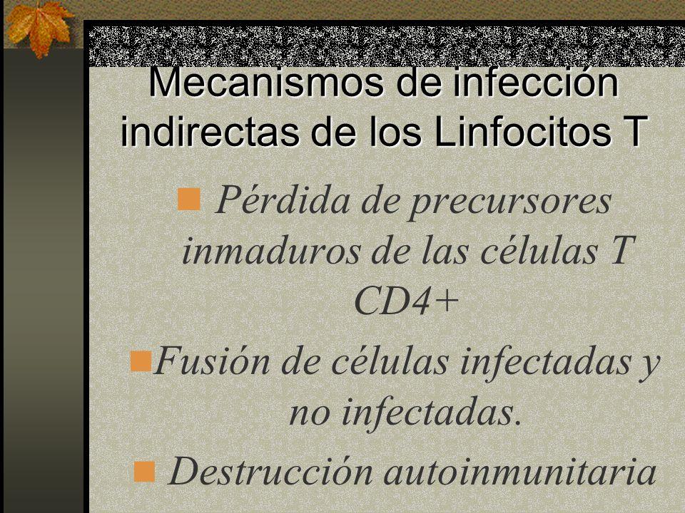 Las Células T infectadas se encuentran en mayor cantidad en ganglios linfáticos, amígdalas y bazo que en sangre periférica. Las Células T infectadas s