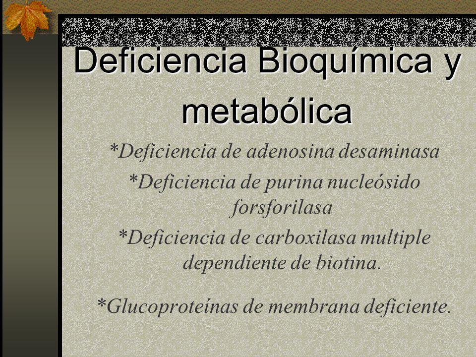 Deficiencia Bioquímica y metabólica *Deficiencia de adenosina desaminasa *Deficiencia de purina nucleósido forsforilasa *Deficiencia de carboxilasa multiple dependiente de biotina.