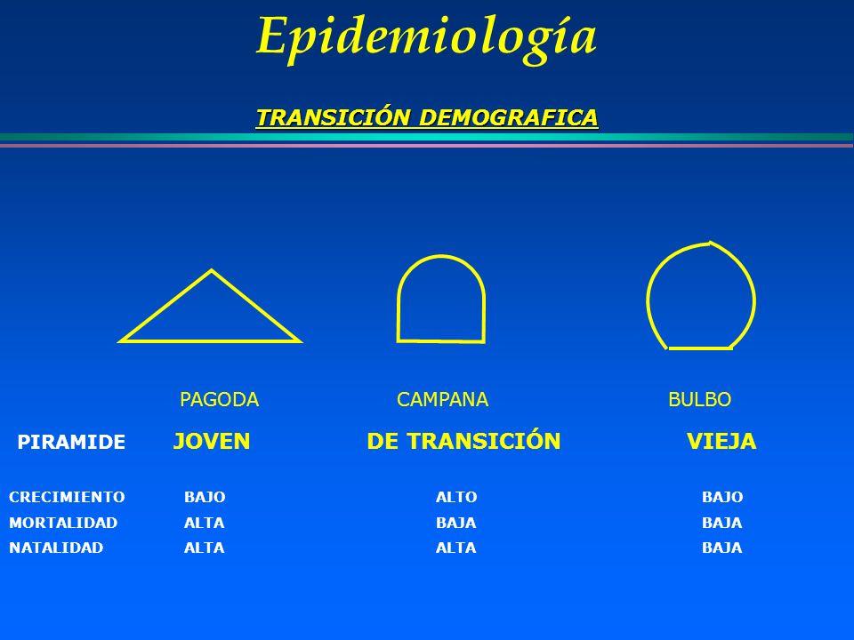 Epidemiología TRANSICIÓN DEMOGRAFICA PAGODA CAMPANA BULBO PIRAMIDE JOVEN DE TRANSICIÓN VIEJA CRECIMIENTO BAJO ALTO BAJO MORTALIDAD ALTABAJA BAJA NATAL