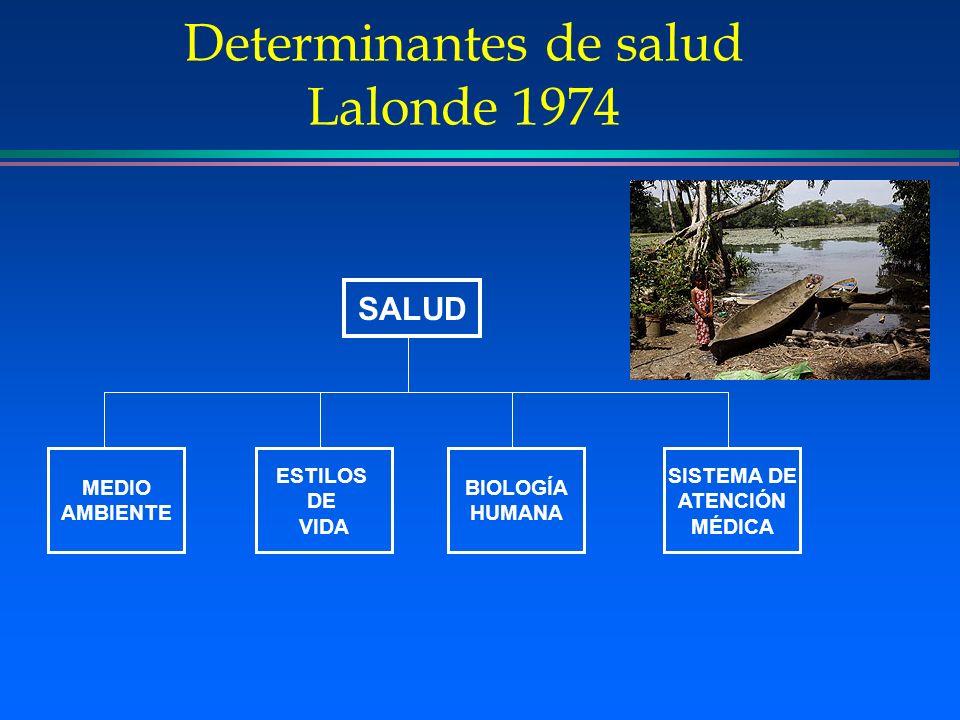 Determinantes de salud Lalonde 1974 SALUD MEDIO AMBIENTE ESTILOS DE VIDA BIOLOGÍA HUMANA SISTEMA DE ATENCIÓN MÉDICA