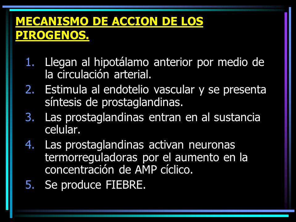 MECANISMO DE ACCION DE LOS PIROGENOS. 1.Llegan al hipotálamo anterior por medio de la circulación arterial. 2.Estimula al endotelio vascular y se pres