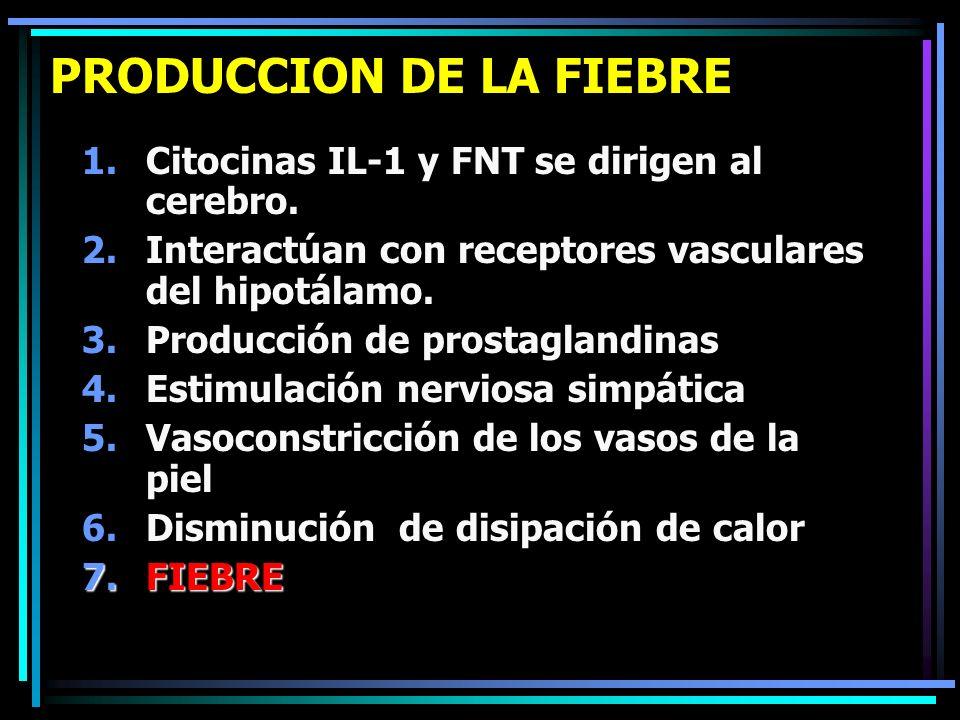 PRODUCCION DE LA FIEBRE 1.Citocinas IL-1 y FNT se dirigen al cerebro. 2.Interactúan con receptores vasculares del hipotálamo. 3.Producción de prostagl
