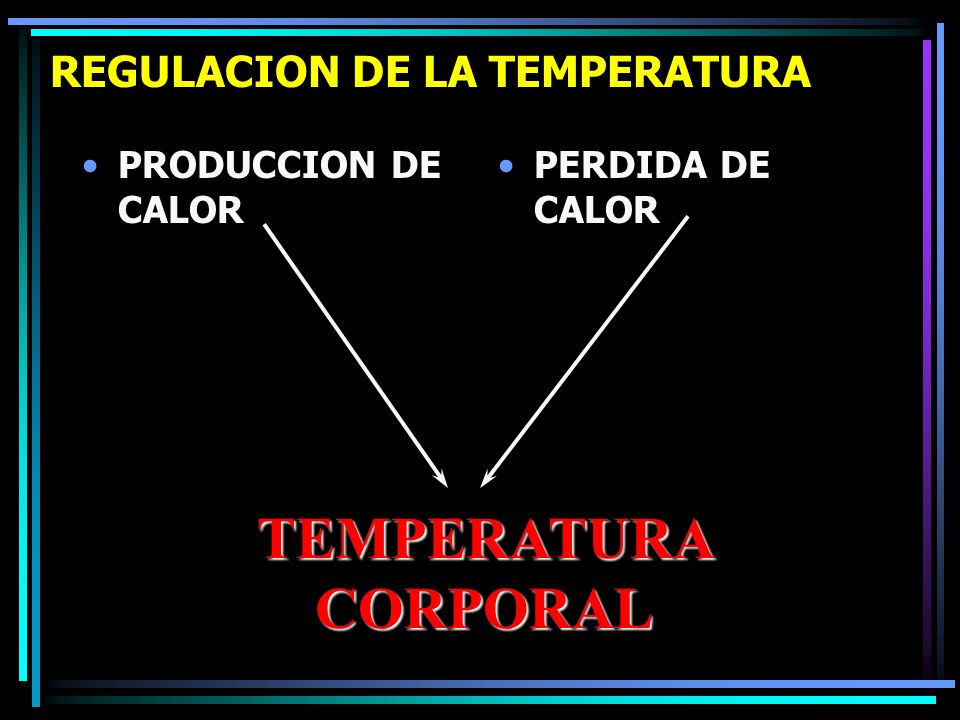 REGULACION DE LA TEMPERATURA PRODUCCION DE CALOR PERDIDA DE CALOR TEMPERATURA CORPORAL