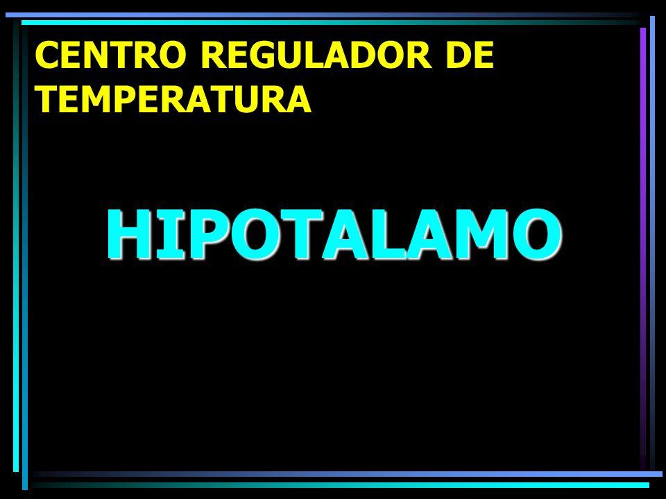 CENTRO REGULADOR DE TEMPERATURA HIPOTALAMO