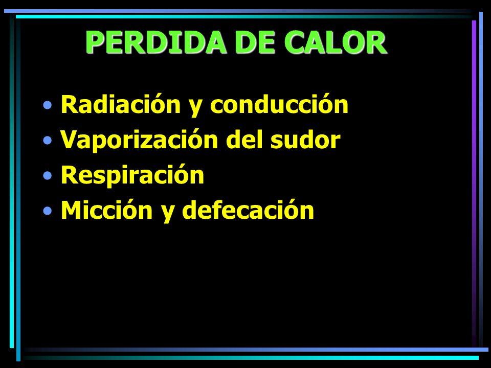PERDIDA DE CALOR Radiación y conducción Vaporización del sudor Respiración Micción y defecación