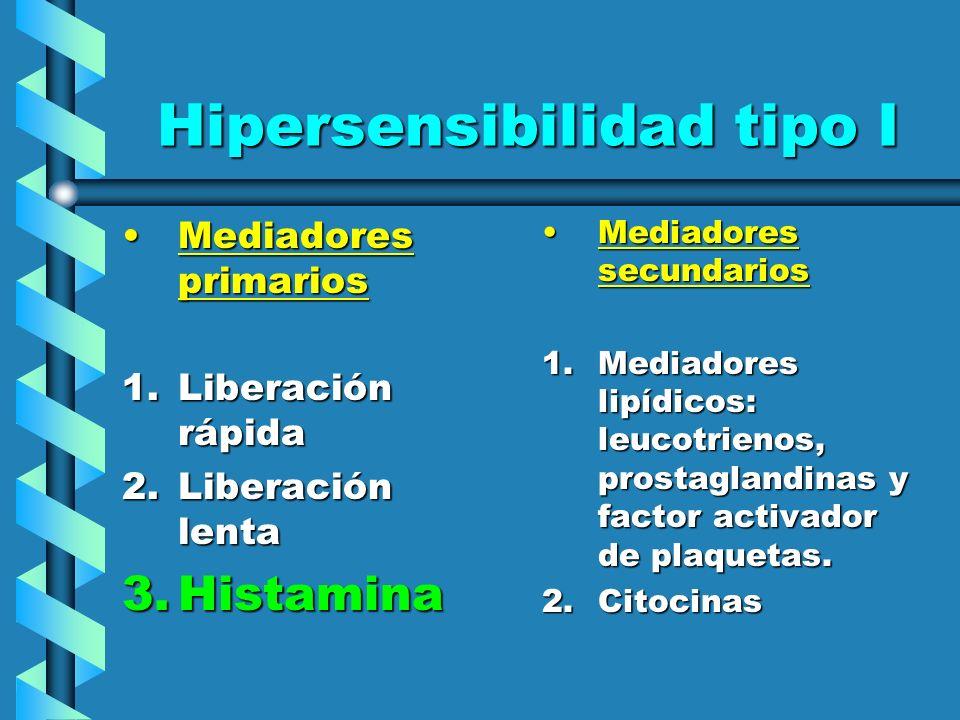 Hipersensibilidad tipo I Mediadores primariosMediadores primarios 1.Liberación rápida 2.Liberación lenta 3.Histamina Mediadores secundarios 1.Mediador