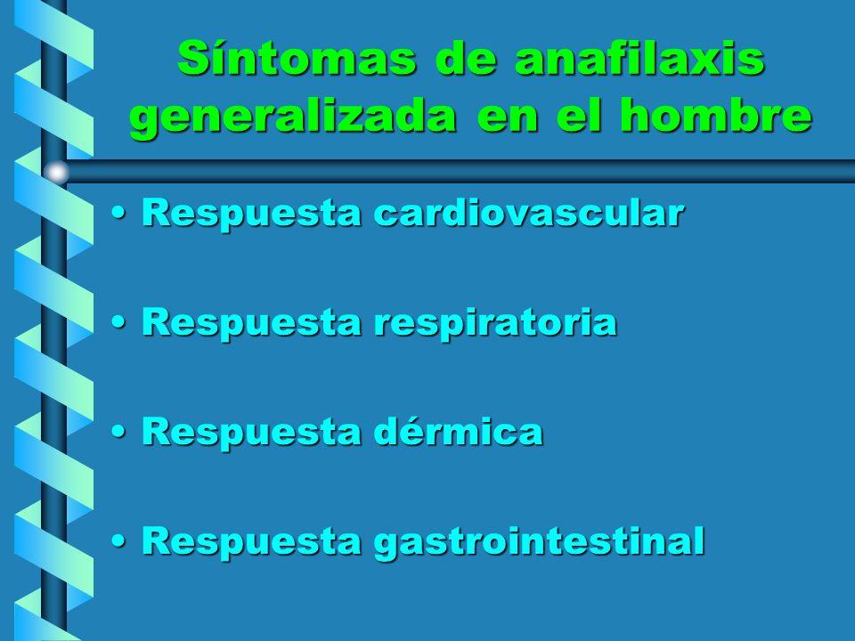 Síntomas de anafilaxis generalizada en el hombre Respuesta cardiovascularRespuesta cardiovascular Respuesta respiratoriaRespuesta respiratoria Respues