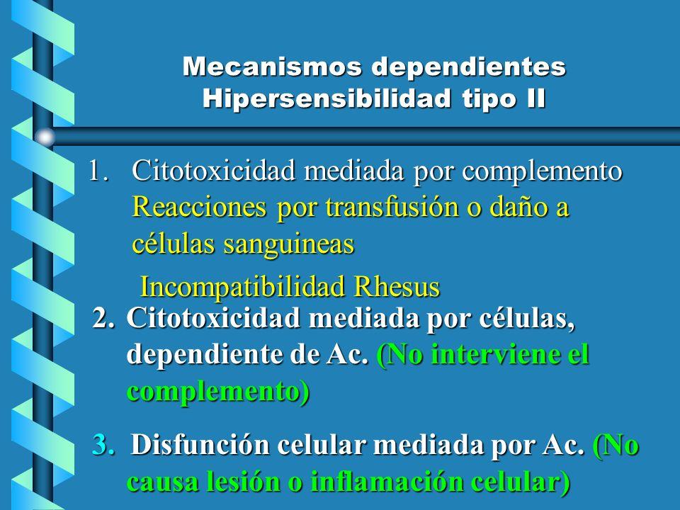 Mecanismos dependientes Hipersensibilidad tipo II 1.Citotoxicidad mediada por complemento Reacciones por transfusión o daño a células sanguineas Incom