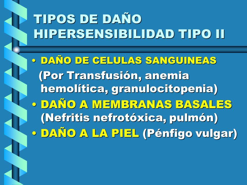 TIPOS DE DAÑO HIPERSENSIBILIDAD TIPO II DAÑO DE CELULAS SANGUINEASDAÑO DE CELULAS SANGUINEAS (Por Transfusión, anemia hemolítica, granulocitopenia) (P