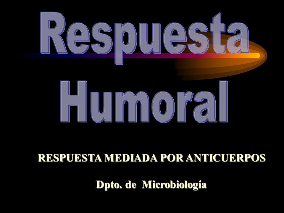 RESPUESTA MEDIADA POR ANTICUERPOS Dpto. de Microbiología