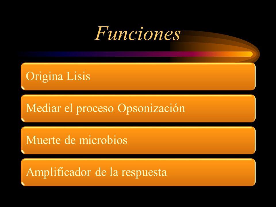 Funciones Origina LisisMediar el proceso OpsonizaciónMuerte de microbiosAmplificador de la respuesta
