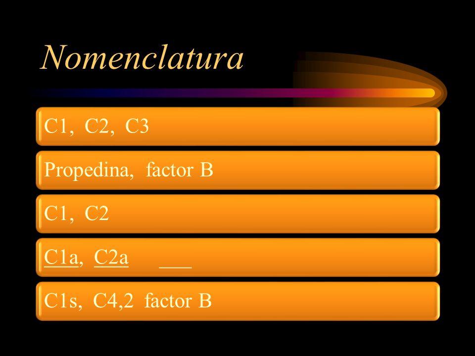 Nomenclatura C1, C2, C3Propedina, factor BC1, C2C1a, C2a ___C1s, C4,2 factor B