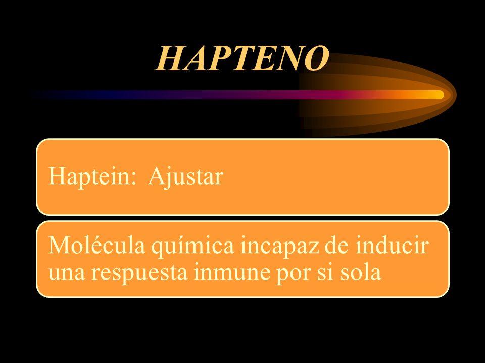 HAPTENO Haptein: Ajustar Molécula química incapaz de inducir una respuesta inmune por si sola