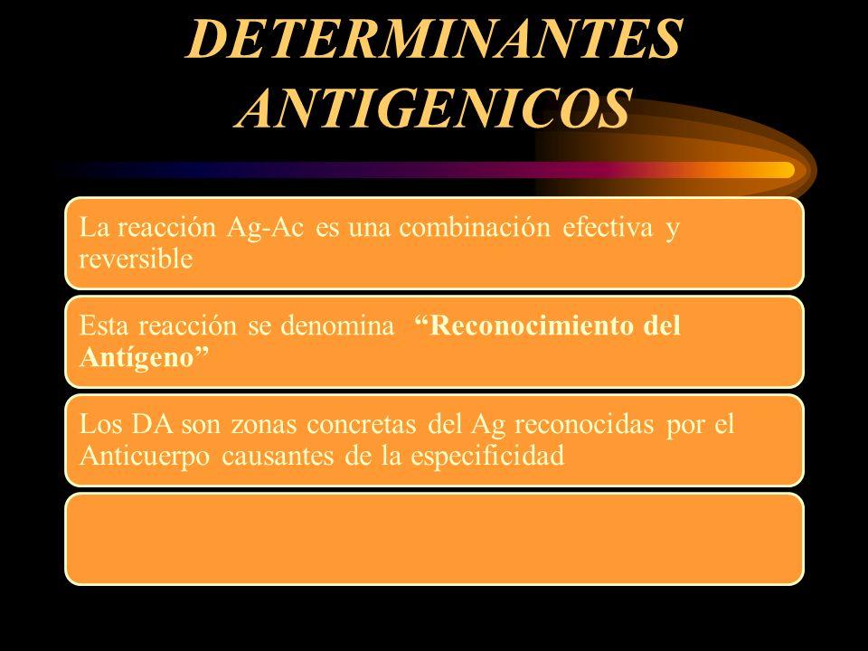 Determinantes Antigénicos