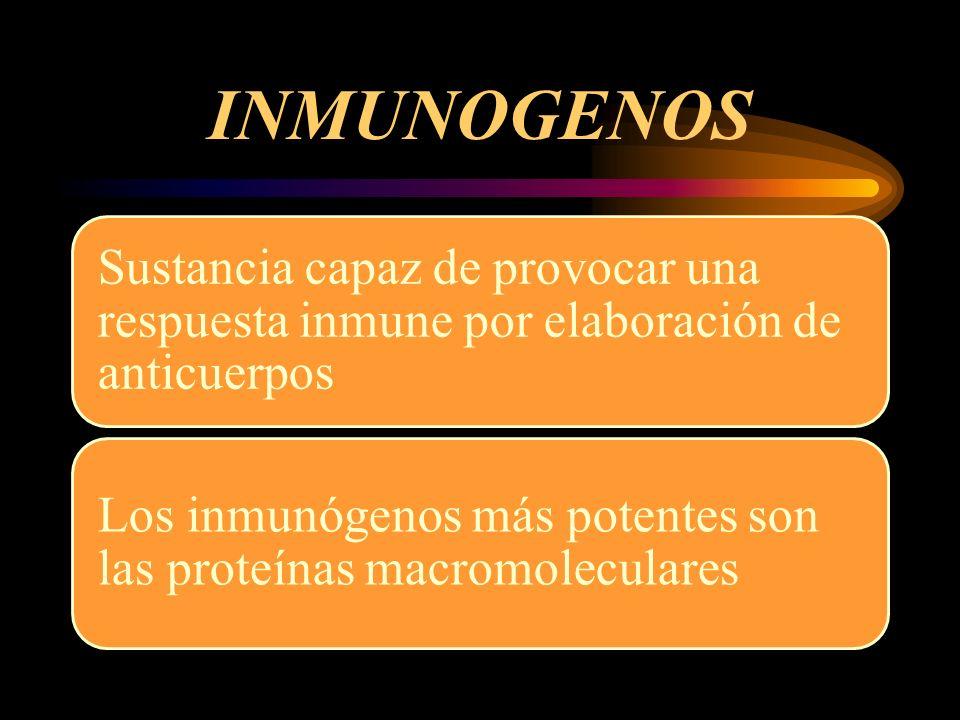 INMUNOGENOS Moléculas pequeñas no son inmunógenos (Haptenos) No hay un umbral específico sino un gradiente de inmunogenicidad en relación con el tamaño molecular Moléculas cargadas eléctricamente poseen mayor poder inmunogénico que las neutras