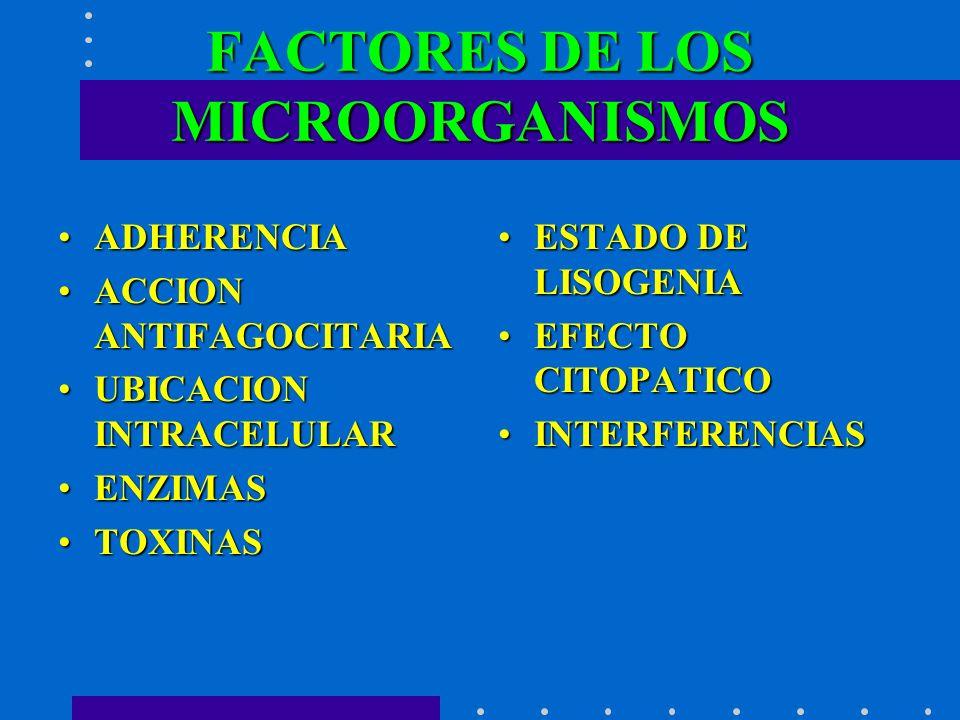 FACTORES DE LOS MICROORGANISMOS ADHERENCIAADHERENCIA ACCION ANTIFAGOCITARIAACCION ANTIFAGOCITARIA UBICACION INTRACELULARUBICACION INTRACELULAR ENZIMAS