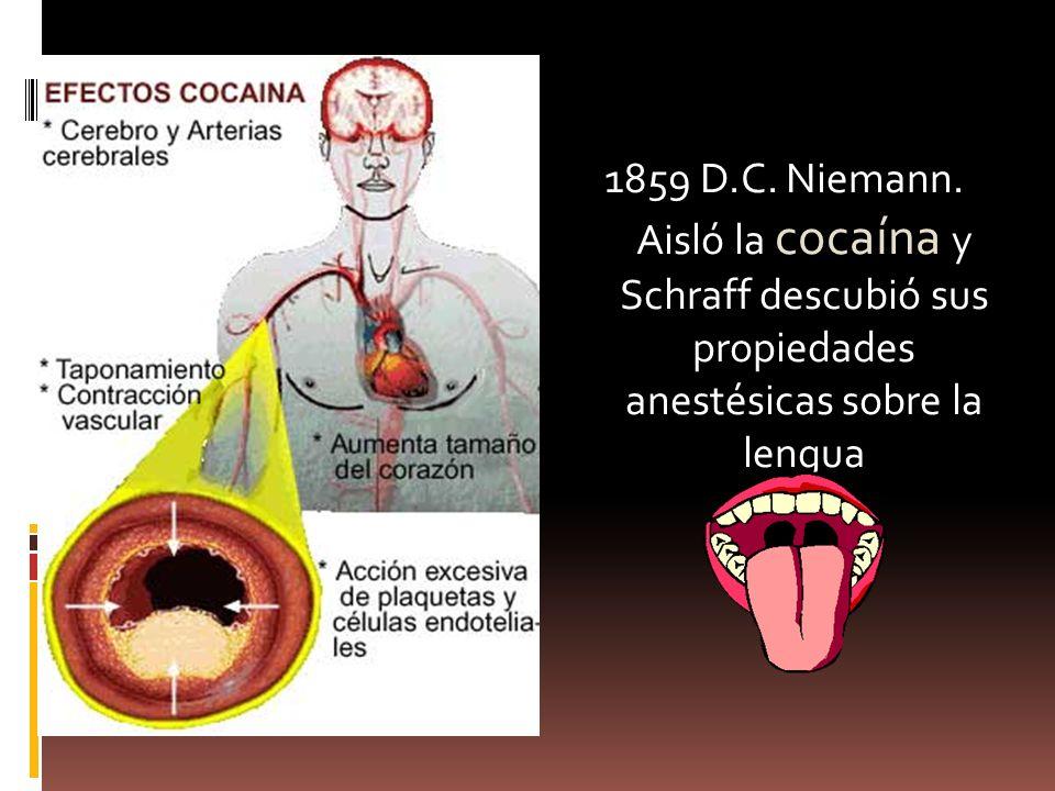 1859 D.C. Niemann. Aisló la cocaína y Schraff descubió sus propiedades anestésicas sobre la lengua