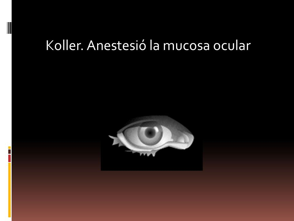 Koller. Anestesió la mucosa ocular