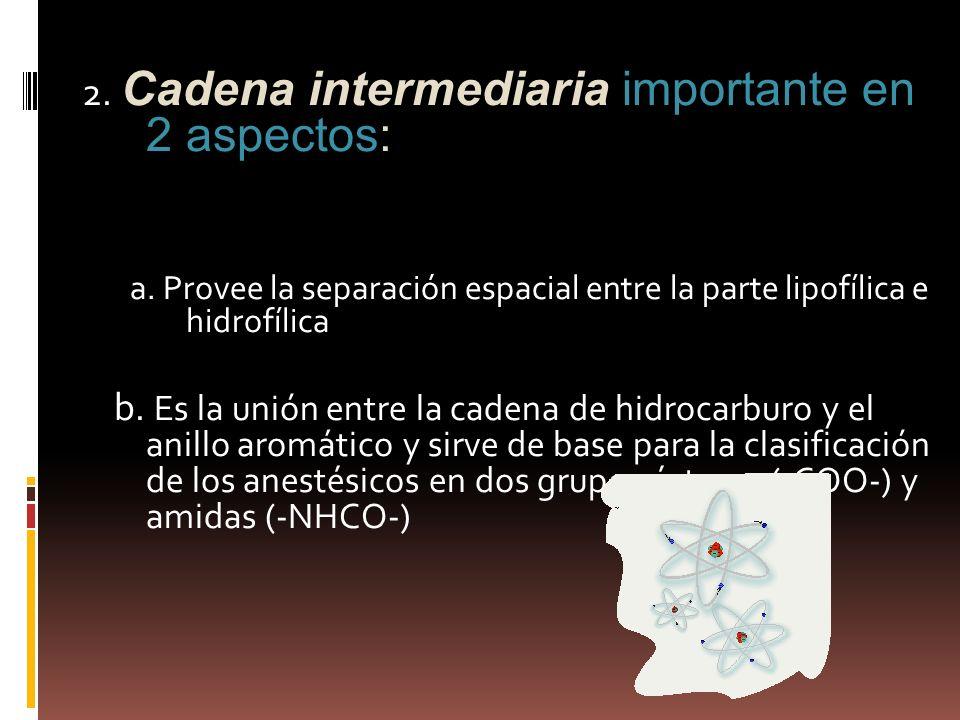 2. Cadena intermediaria importante en 2 aspectos: a. Provee la separación espacial entre la parte lipofílica e hidrofílica b. Es la unión entre la cad