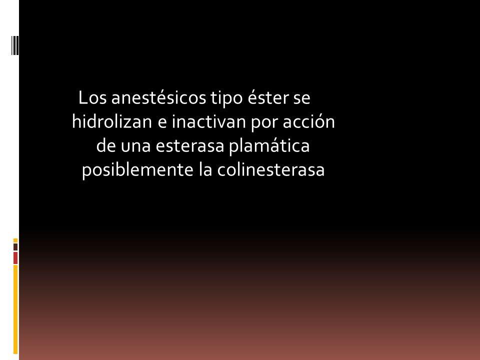 Los anestésicos tipo éster se hidrolizan e inactivan por acción de una esterasa plamática posiblemente la colinesterasa