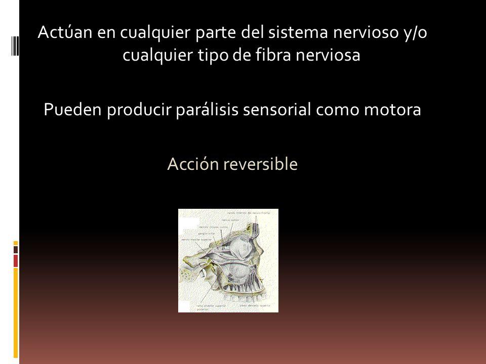 Actúan en cualquier parte del sistema nervioso y/o cualquier tipo de fibra nerviosa Pueden producir parálisis sensorial como motora Acción reversible