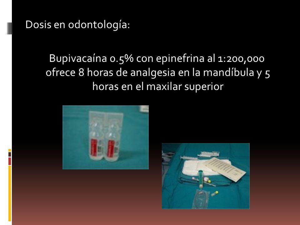 Dosis en odontología: Bupivacaína 0.5% con epinefrina al 1:200,000 ofrece 8 horas de analgesia en la mandíbula y 5 horas en el maxilar superior
