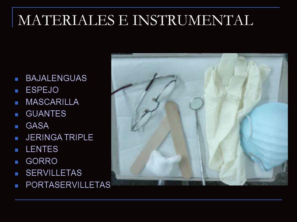 MATERIALES E INSTRUMENTAL BAJALENGUAS ESPEJO MASCARILLA GUANTES GASA JERINGA TRIPLE LENTES GORRO SERVILLETAS PORTASERVILLETAS