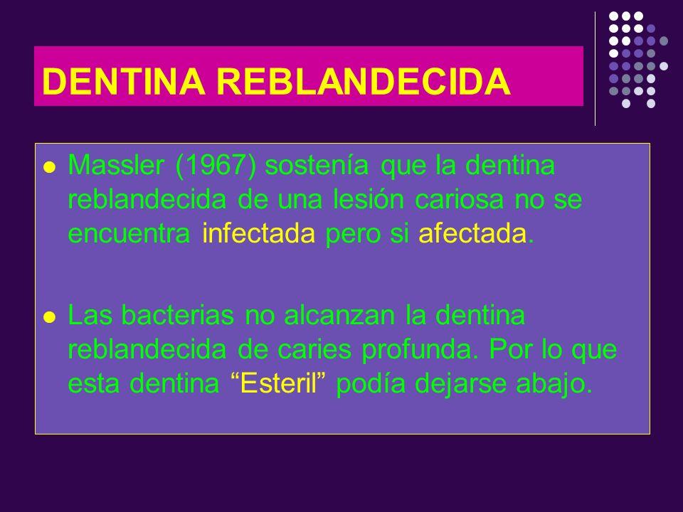 DENTINA REBLANDECIDA Massler (1967) sostenía que la dentina reblandecida de una lesión cariosa no se encuentra infectada pero si afectada. Las bacteri